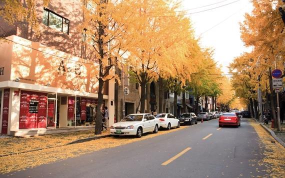 韩国首尔标品定制4日3晚行程