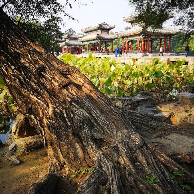 河北承德避暑山庄文艺自由行旅游攻略之全国重点文物保护单位