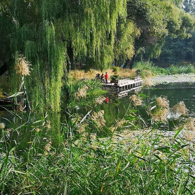河北承德避暑山庄文艺自由行旅游攻略之的湖泊区