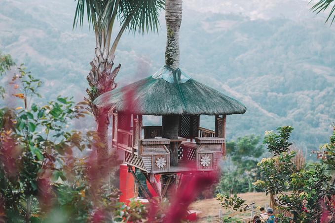 菲律宾超实用热带岛屿旅游美食行程攻略之宿雾网红打卡点