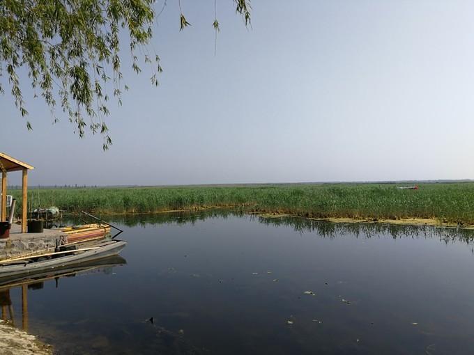 河北雄安新区旅游美食行程攻略之湿地公园