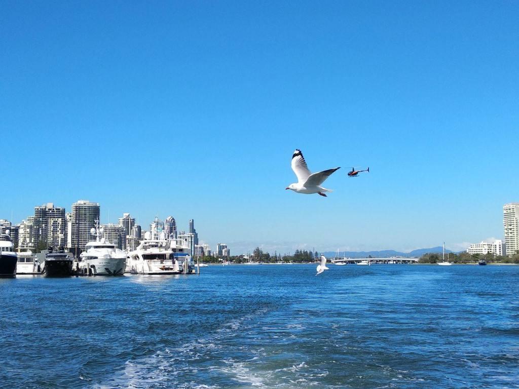 缤纷澳洲东海岸-澳大利亚10日畅玩定制游