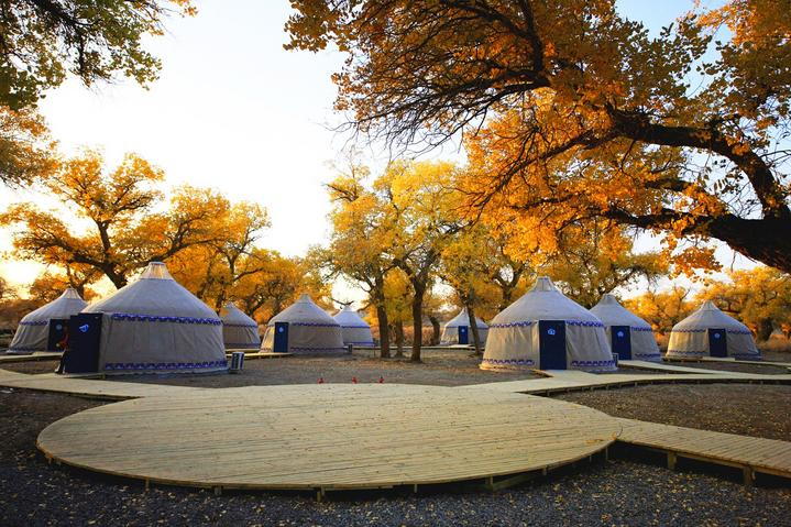 内蒙古大漠明珠额济纳旗自由行超实用游行程攻略之住宿蒙古包