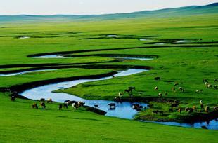 驰骋内蒙草原