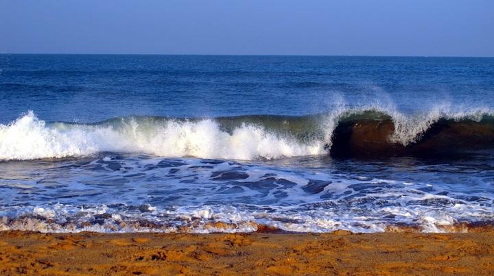 斯里兰卡观鲸游